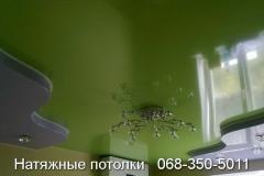 многоуровневые натяжные потолки Кривой Рог (25)