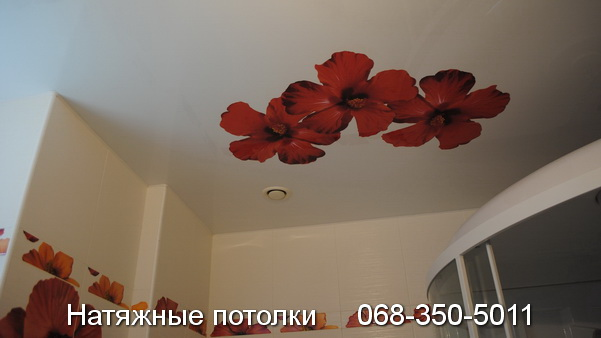 натяжные потолки с фотопечатью Кривой Рог (1)