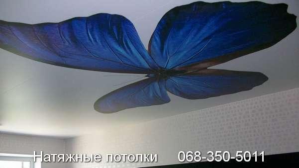 натяжные потолки с фотопечатью Кривой Рог (5)