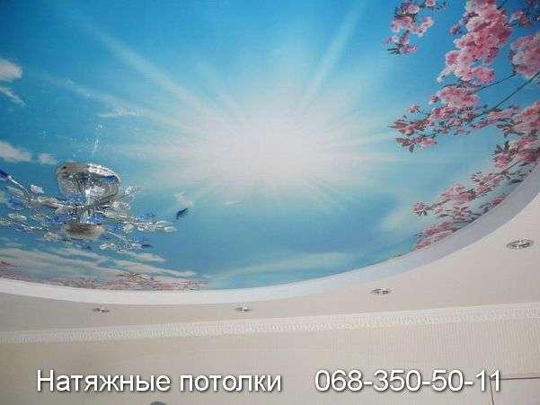 Многоуровневые натяжные потолки Кривой Рог (121)