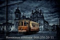 Натяжные потолки Кривой Рог (108)