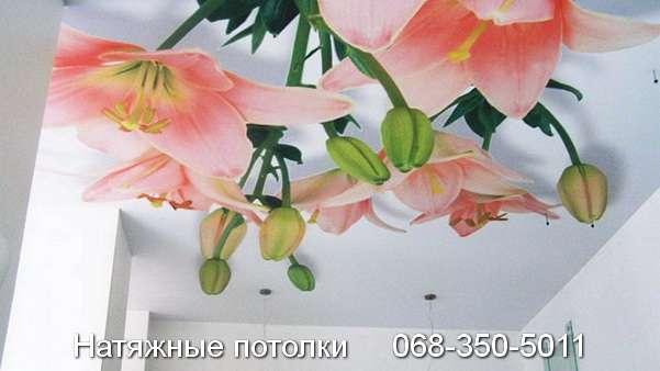 натяжные потолки с фотопечатью Кривой Рог (16)