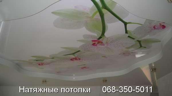 натяжные потолки с фотопечатью Кривой Рог (19)