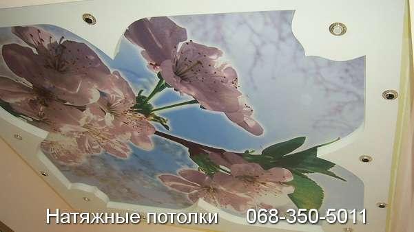 натяжные потолки с фотопечатью Кривой Рог (7)