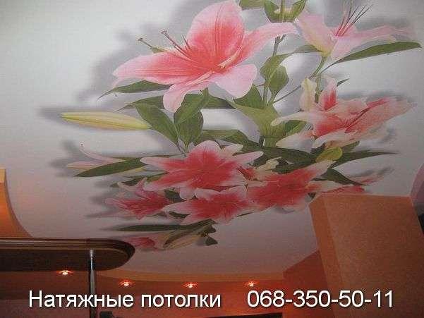 Многоуровневые натяжные потолки Кривой Рог (123)