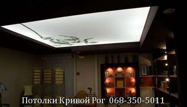 Натяжные потолки с подсветкой заказать в Кривом Роге (26)