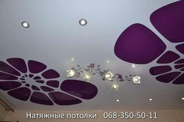 перфорированные резные натяжные потолки (34)