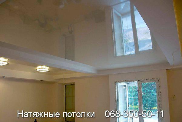 арт декор натяжные потолки кривой рог