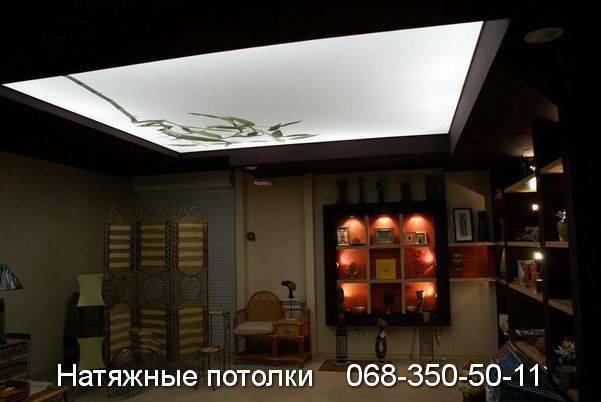 натяжные потолки с рисунком и светодиодным освещением в кривом роге